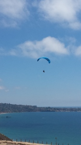 My son goes paragliding at the Torrey Pines Gliderport in La Jolla, CA
